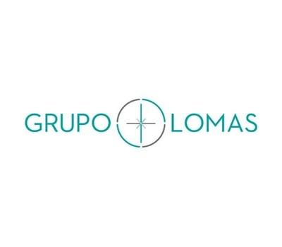 Grupo Lomas image